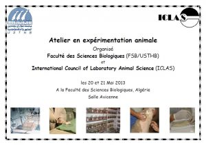 Atelier Expérimentation animale 20 21 Mai 2013 Affiche