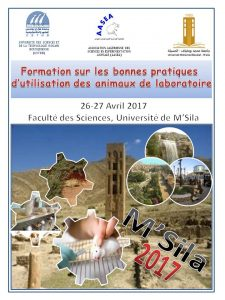 Affiche Formation M'Sila