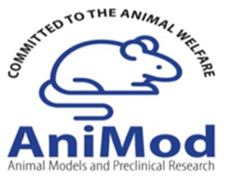 logo-animod2021
